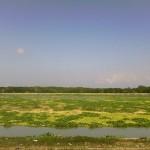 Debit air Waduk Muara Nusa Dua di muara Tukad Badung mengalami penurunan drastis - foto: Koranjuri.com