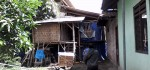 Memicu Polusi, Warga Protes Peternakan Ayam Di Tengah Pemukiman