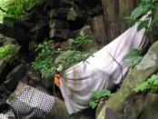 Bebatuan Purbakala di Desa Tinggarsari, Kecamatan Busungbiu