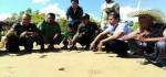 Para Penjaga Telur Penyu di Pantai Kola