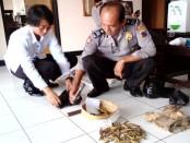 142 peluru hampa yang ditemukan, kini diamankan di Mapolsek Grabag – foto: Sujono/Koranjuri.com