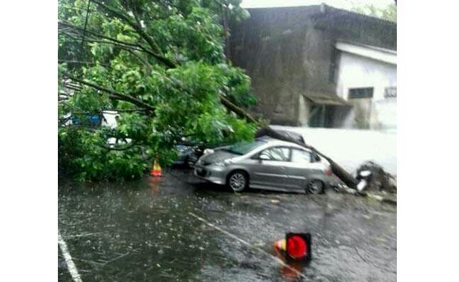 Pohon tumbang meenimpa sebuah mobil akibat hujan lebat disertai angin kencang yang melanda wilayah Salatiga - foto: Istimewa