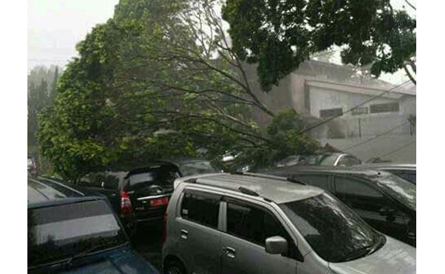Sejumlah mobil yang tengah terparkir tertimpa pohon tumbang akibat hujan lebat disertai angin kencang yang melanda wilayah Salatiga, Kamis, 8 Desember 2016 - foto: Istimewa