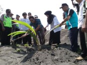 Penanaman bibit pohon kelapa oleh Wabup Purworejo, Yuli Hastuti, menandai awal kegiatan HPN 2017 di Pantai Jetis, Grabag, Purworejo, Kamis (8/2) - foto: Sujono/Koranjuri.com