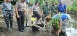 Peringati Hari Kartini, Polres Kebumen adakan Tanam 1000 Pohon Mangrove