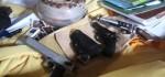 Polisi: 'Pasien' Sabu-sabu di Rumah Jalan Pulau Batanta Denpasar Bisa Langsung Pakai di Tempat
