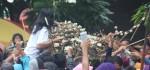 Gunungan Sekaten Tandai Berakhirnya Perayaan Tradisi Sekaten Di Keraton Solo
