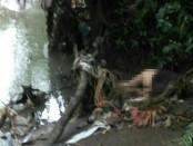 Sosok Mr.X yang ditemukan tewas di sepanjang aliran Sungai Yeh Ini, Tabanan - foto: Istimewa