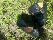 2 bungkusan ganja yang dikirim oleh orang tak dikenal dengan cara dilempar dari luar tembok lapas Kerobokan - foto: Istimewa