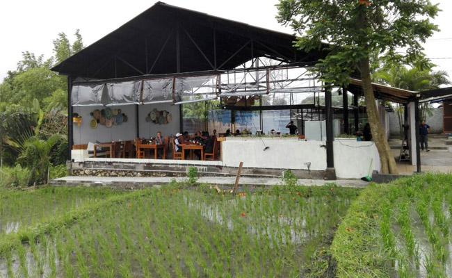 Kahuna Bali yang menyatu dengan areal persawahan produktif di kawasan Pengubengan Kauh, Kerobokan, Bali - foto: Koranjuri.com