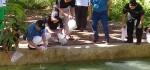 Bupati: Kembangkan Destinasi Wisata Dukung Romansa Purworejo