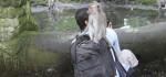 Suka Usil, ini Cerita Pengelola Tentang Primata di Monkey Forest Ubud