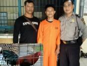 Pelaku pencurian ayam diamankan Polsek Denpasar Barat - foto: Istimewa