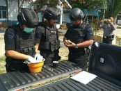 Tim penjinak bom dari Sat Brimob Polda Jateng , Detasemen Gegana, Unit 3 Banyumas, saat memeriksa benda yang diduga granat nanas, Minggu (9/9/2018) - foto: Sujono/Koranjuri.com