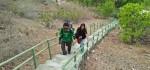 Mendaki Eksotisme Tangga Tiga Ratus di Pulau Rote Ndao