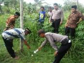 Lokasi dimana Arif Susanto, warga Desa Korowelang, Kutowinangun, Kebumen, ditemukan tewas - foto: Sujono/Koranjuri.com