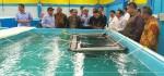Ijin Usaha Budidaya Ikan Bakal Gunakan Sistem OSS