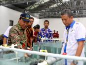Direktur Jenderal Perikanan Budidaya Kementerian Kelautan dan Perikanan (KKP), Slamet Soebjakto meresmikan hatchery di Ambon pada Selasa (30/4/2019) - foto: Istimewa