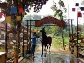 Pintu gerbang Kampung Koboi di Desa Karangrejo, Kutoarjo, Purworejo - foto: Sujono/Koranjuri.com