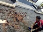 Seorang warga membersihkan reruntuhan genting yang rontok akibat guncangan gempa yang terjadi di Bali, Selasa, 16 Juli 2019 sekitar pukul 08.30 Wita - foto: Koranjuri.com