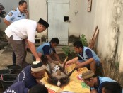 Warga binaan Rutan Purworejo tengah mengolah kambing qurban, Minggu (11/8) - foto: Sujono/Koranjuri.com