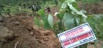Aksi Masyarakat Peduli Lawu Menanam Pohon di Area Hutan Lawu yang Rusak