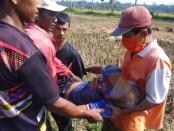 Jasad Marlan (63), warga Kelurahan Cangkrep Lor yang ditemukan tak bernyawa pada Rabu (29/4) pagi, di saluran irigasi tepi sawah, ikut Desa Sidorejo, Purworejo, saat dievakuasi - foto: Sujono/Koranjuri.com