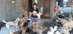 Pernah Diselamatkan Anjing Liar, Gadis Asal Ubud ini sekarang Jadi Dog Rescuer