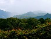 Foto: panduanwisata.id