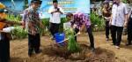 Bupati Purworejo Canangkan Desa Karangmulyo sebagai Kampung Durian