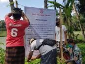 Krama Desa Pakraman Pakudui, Desa Kedisan, Kecamatan Tegallalang saat memasang baliho, Minggu (23/8/2020) - foto: Catur/Koranjuri.com