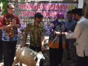 Wakil Bupati Purworejo Yuli Hastuti, menyerahkan bantuan kambing untuk Gabungan Kelompk Tani 'Dadi Makmur' Desa Jogoresan, Purwodadi, Jum'at (11/09/2020) - foto: Sujono/Koranjuri.com