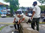 Satuan Polisi Pamong Praja Provinsi Bali melakukan penyegelan akses masuk ke Lapangan Puputan Renon - foto: Istimewa