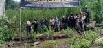 Polri Musnahkan 7 Hektar Ladang Ganja di Gunung Leuser