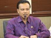 Sekretaris Daerah Provinsi Bali Dewa Made Indra - foto: Istimewa