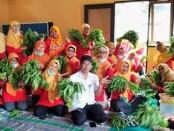 Kelompok Wanita Tani (KWT) Anggrek Asri, Perumahan Pepabri, Kelurahan Borokulon, Kecamatan Banyuurip, Kabupaten Purworejo - foto: Sujono/Koranjuri.com