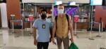 Bule Linglung yang Ditemukan Menggelandang di Mengwi Dideportasi