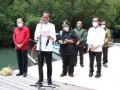 Presiden Jokowi berada si Taman Hutan Raya Ngurah Rai untuk meninjau pelaksanaan penanaman mangrove dalam kunjungan kerja ke Bali - foto: Istimewa