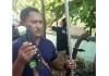Bawa Sajam, 9 Anggota Ormas di Bali Ditangkap Saat Sidang di PN Denpasar