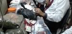 Polda Bali Menyita Narkotika Baru Sejenis Ganja