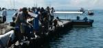 Ratusan Ribu Baby Lobster Dilepas Kembali di Perairan Serangan