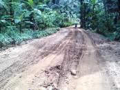 Jalan kabupaten sepanjang 2 km di Desa Somorejo-Krendetan yang rusak akibat aktifitas kendaraan pengangkut material penambangan CV Gunung Mulia - foto: Sujono/Koranjuri.com