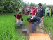 Kondisi mayat yang ditemukan di sawah Desa Sawangan, Alian, Kebumen – foto: Sujono/Koranjuri.com
