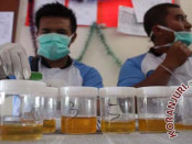 Ilustrasi - Tes urine menggunakan empat parameter untuk kandungan jenis narkoba. Yang akan terdeteksi pada tes tersebut antara lain, urine yang mengandung amphetamine atau kandungan yang ada dalam sabu-sabu, metamphetamine yang terdapat pada ekstasi, THC untuk ganja dan BZO atau kandungan yang terdapat pada obat yang dijual di pasaran secara bebas - foto: Koranjuri.com