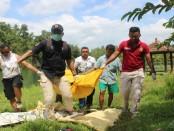 Proses evakuasi mayat penuh luka di Poncowarno, Kebumen - foto: Sujono/Koranjuri.com