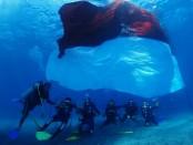 Bendera Merah Putih berukuran 5x10 meter dikibarkan di dasar laut Bali oleh anggota anggota Polda Bali, Bhayangkari dan penggemar diving - foto: Istimewa