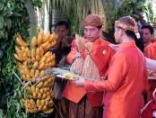 Presiden Joko Widodo melakukan prosesi pernikahan putrinya, Kahiyang Ayu dengan Muhammad Bobby Afif Nasution dengan memasang sendiri bleketepe atau anyaman daun kelapa dan pisang tuwuhan - foto: Istimewa