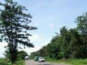Jalur Deandels, merupakan jalur alternatif di pesisir selatan pulau Jawa, yang memanjang, dari Kabupaten Bantul, Yogyakarta, hingga Kabupaten Cilacap, dengan panjang sekitar 130 km - foto: Sujono/Koranjuri.com