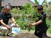 Cawagub Bali nomer urut 1, Cok Ace bertemu dengan produsen kopi di Desa Adat Mengani, Kintamani - foto: Istimewa