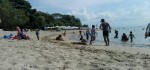 Lancong di Pantai Karang, Pilihan Wisata Pantai Keluarga